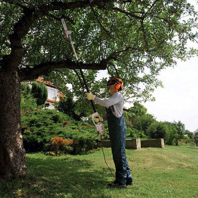 Particulier coupant une branche avec un perche d'élagage Stihl